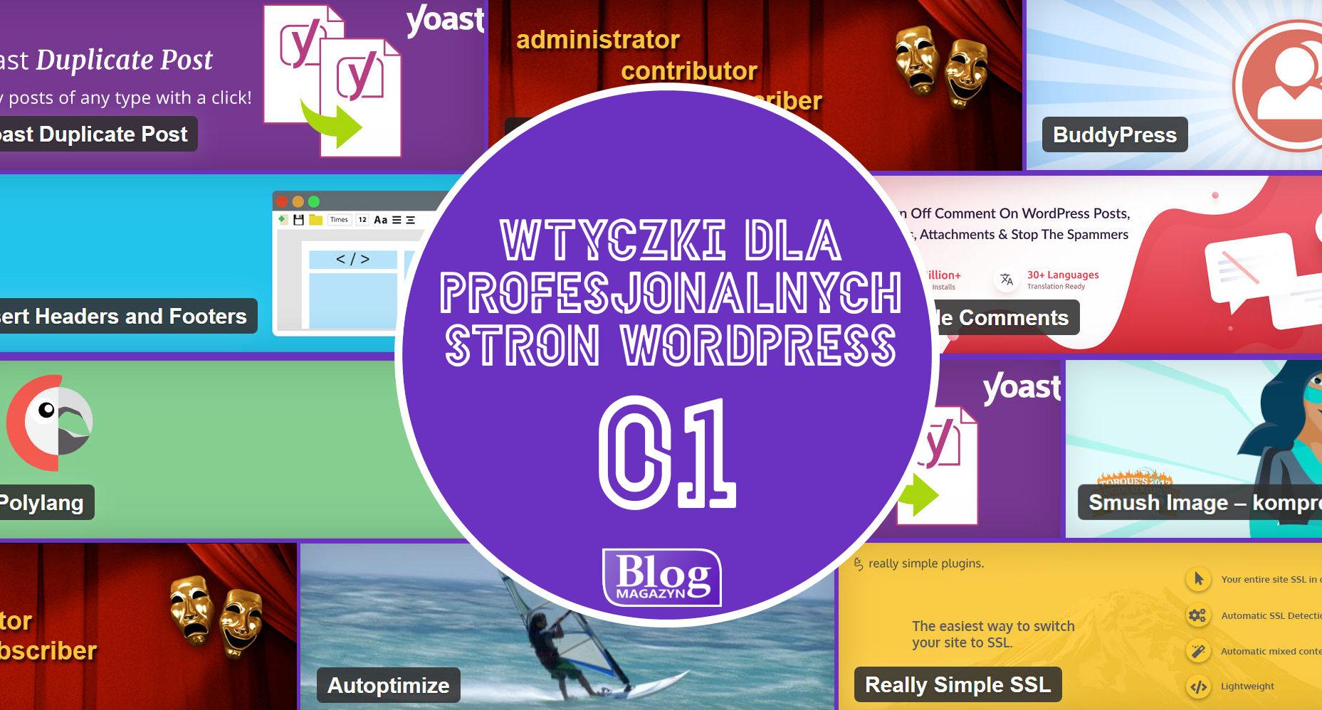 Niezbędne wtyczki dla profesjonalnych stron WordPress